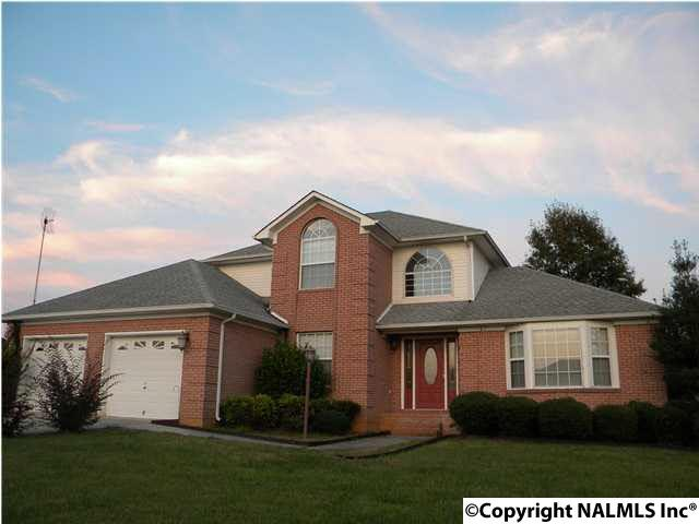Residential/Single Family - TONEY, AL (photo 1)