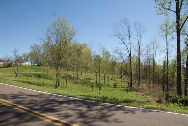Lots and Land - Burlison, TN (photo 4)