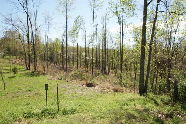 Lots and Land - Burlison, TN (photo 5)