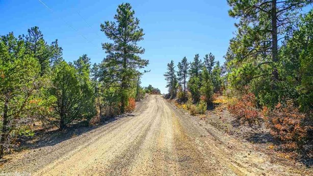 Lots and Land - Bigelow, AR (photo 1)
