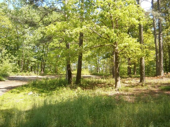 Lots and Land - Cartersville, GA (photo 2)