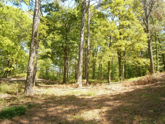 Lots and Land - Cartersville, GA (photo 3)