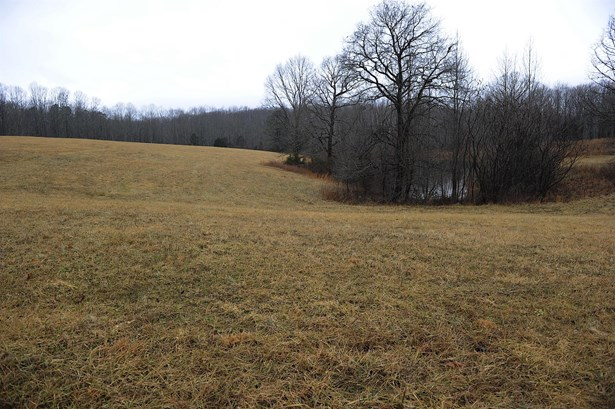 Lots and Land - Smithville, TN (photo 4)
