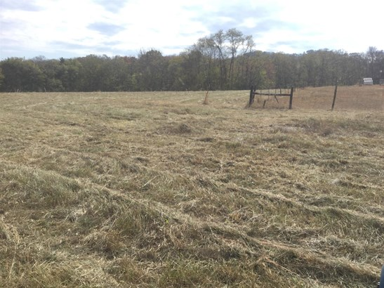 Lots and Land - College Grove, TN (photo 3)