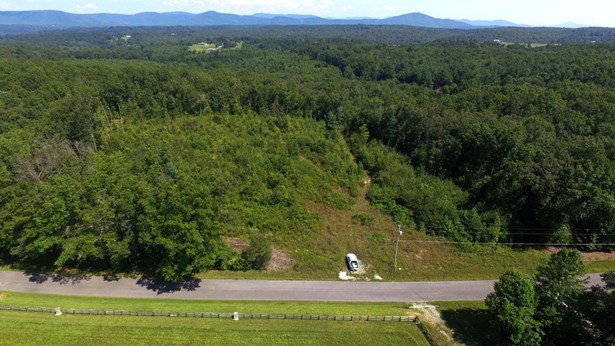 Lots and Land - Sunbright, TN (photo 1)