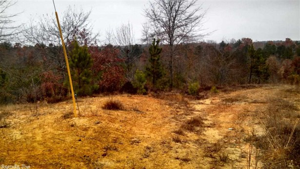 Lots and Land - Alexander, AR (photo 2)
