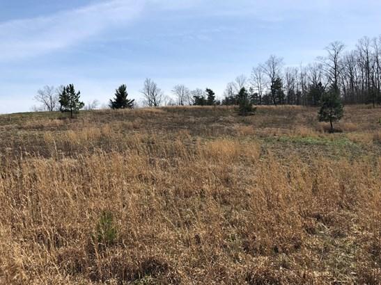 Lots and Land - Jamestown, TN (photo 4)