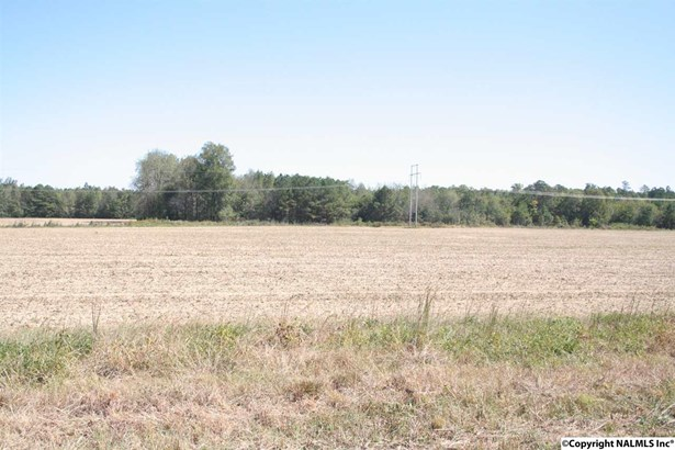 Lots and Land - ELKMONT, AL (photo 1)