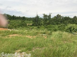 Lots and Land - Mayflower, AR (photo 1)