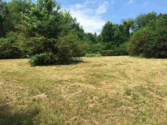 Lots and Land - Rossville, TN (photo 1)