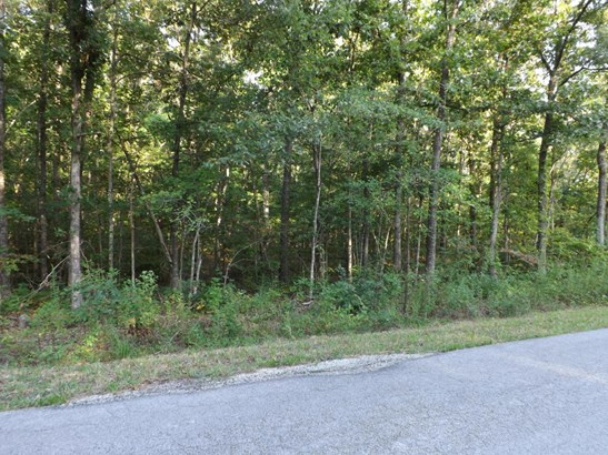 Lots and Land - Crossville, TN (photo 1)