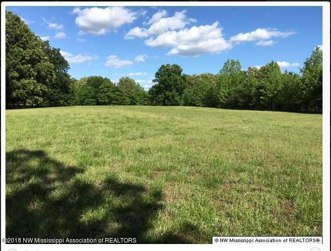 Lots and Land - Lamar, MS (photo 1)