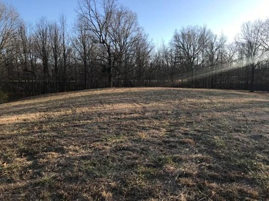 Lots and Land - Lamar, MS (photo 3)