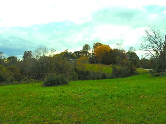 Lots and Land - GAINESBORO, TN (photo 4)
