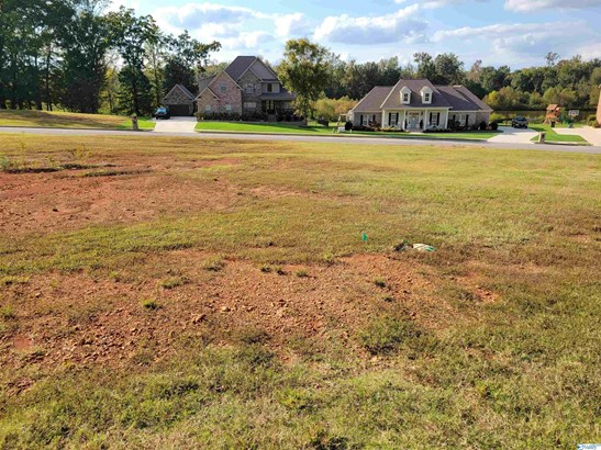 Lots and Land - Meridianville, AL