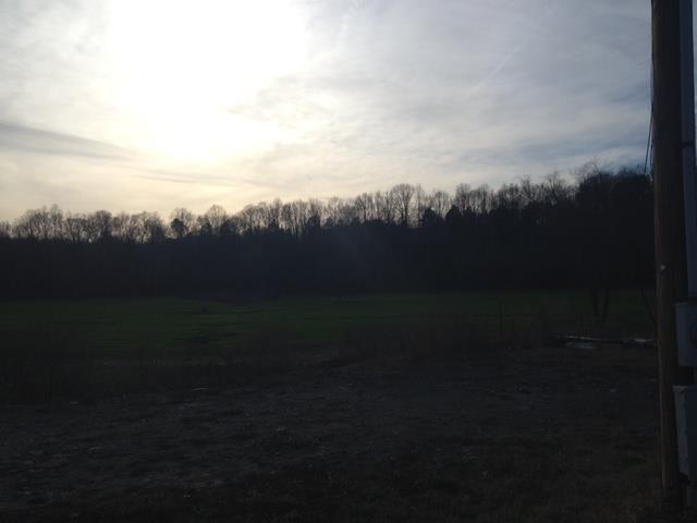 Lots and Land - Ashland City, TN (photo 4)