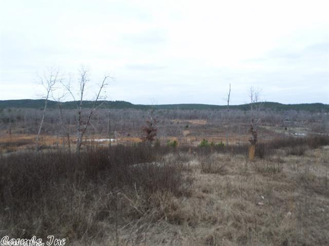 Lots and Land - Paron, AR (photo 1)