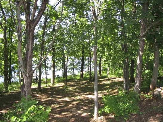 Lots and Land - Cherokee Village, AR (photo 5)