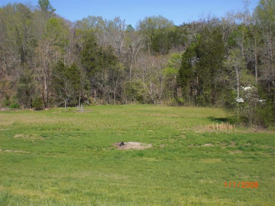 Residential/Single Family - Mooresburg, TN (photo 2)
