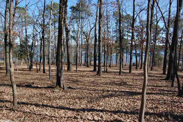 Lots and Land - Heber Springs, AR (photo 5)