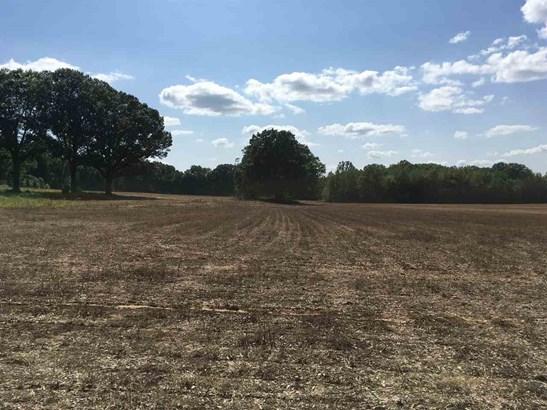 Lots and Land - Ashland, MS (photo 5)