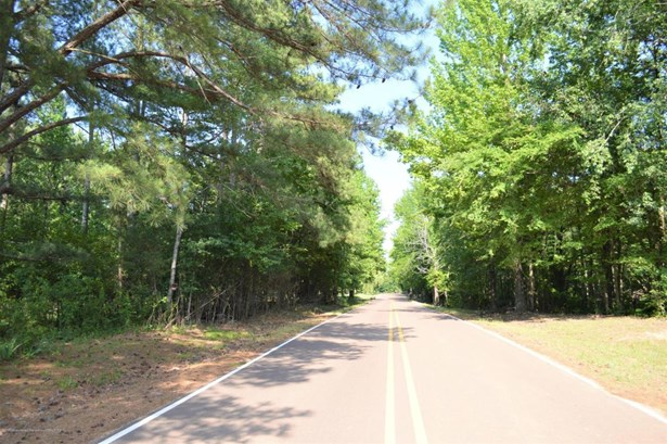 Lots and Land - Nesbit, MS (photo 1)