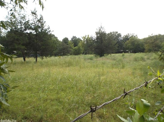 Lots and Land - Pangburn, AR (photo 4)