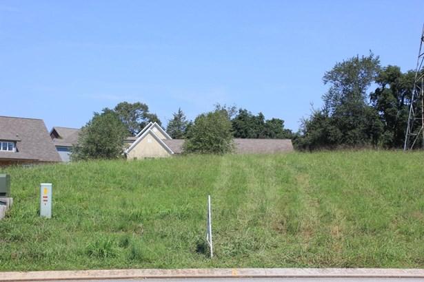 Lots and Land - Apison, TN (photo 4)