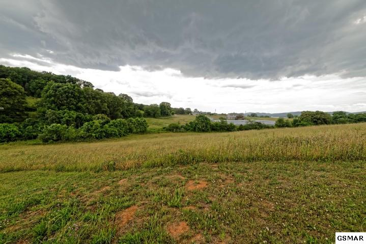 Lots and Land - Rutledge, TN (photo 3)
