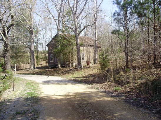 Lots and Land - Summertown, TN (photo 2)