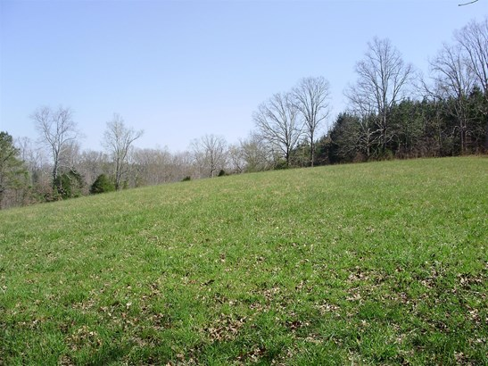 Lots and Land - Summertown, TN (photo 3)