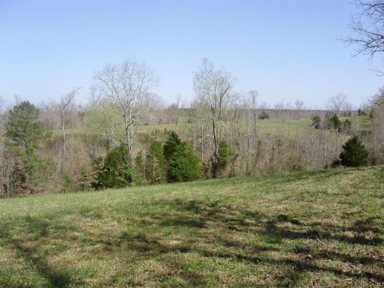 Lots and Land - Summertown, TN (photo 4)