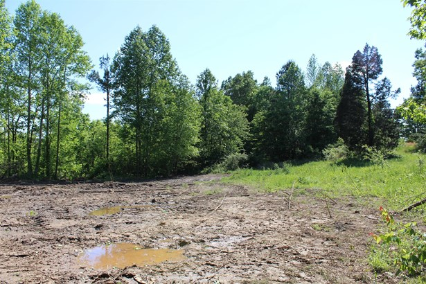 Lots and Land - Mc Ewen, TN (photo 3)
