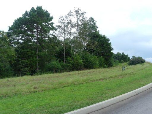Lots and Land - Harriman, TN (photo 1)