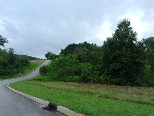 Lots and Land - Harriman, TN (photo 2)