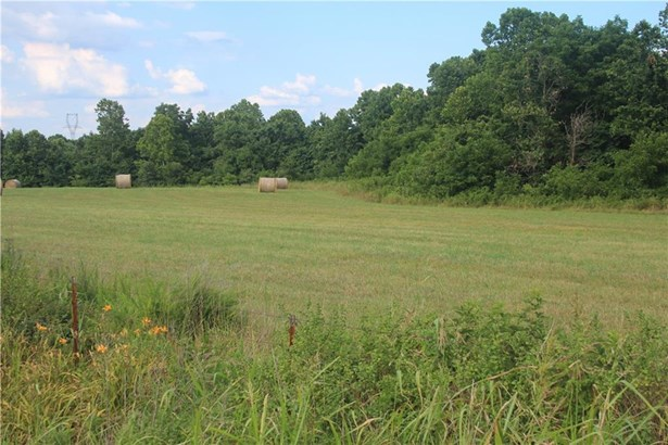 Lots and Land - Decatur, AR (photo 1)