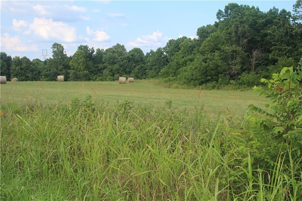 Lots and Land - Decatur, AR (photo 2)