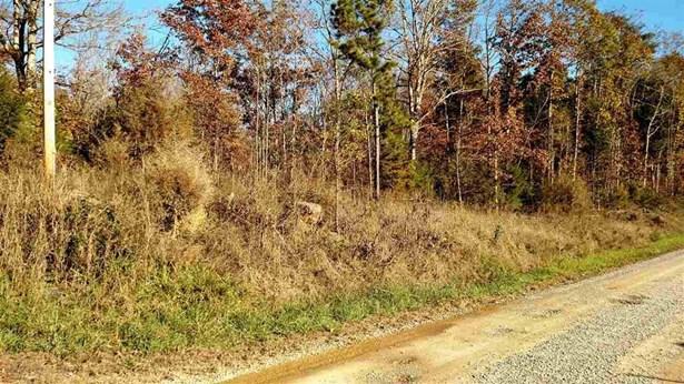 Lots and Land - Calhoun, TN (photo 5)