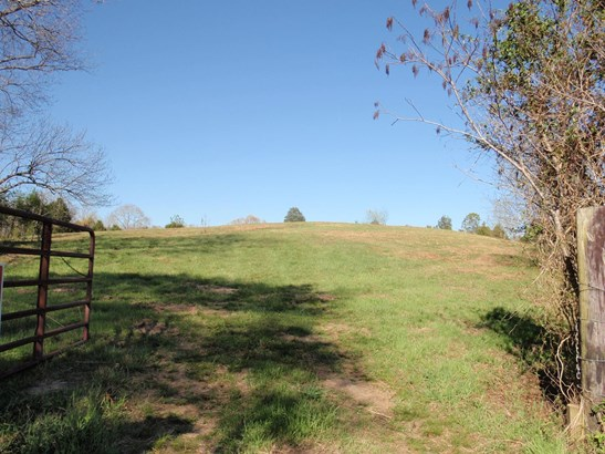 Lots and Land - Lyles, TN (photo 1)