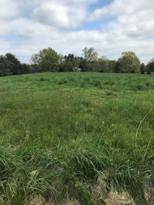 Lots and Land - Birchwood, TN (photo 3)