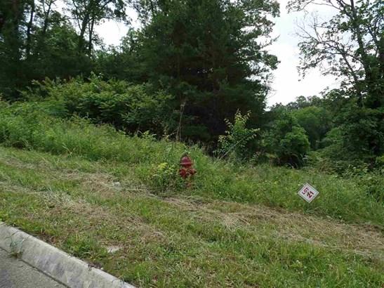 Lots and Land - Talbott, TN (photo 2)
