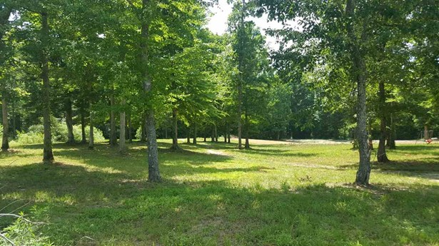 Lots and Land - Decaturville, TN (photo 3)