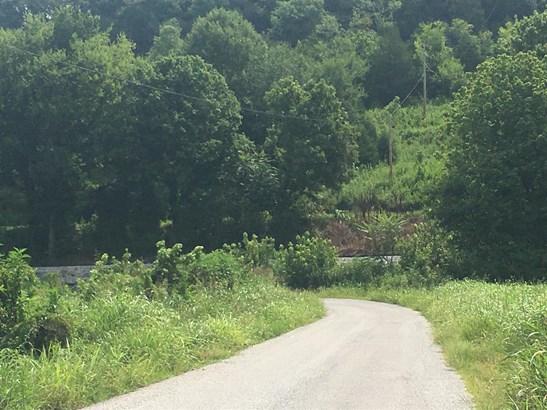 Lots and Land - Buffalo Valley, TN (photo 4)