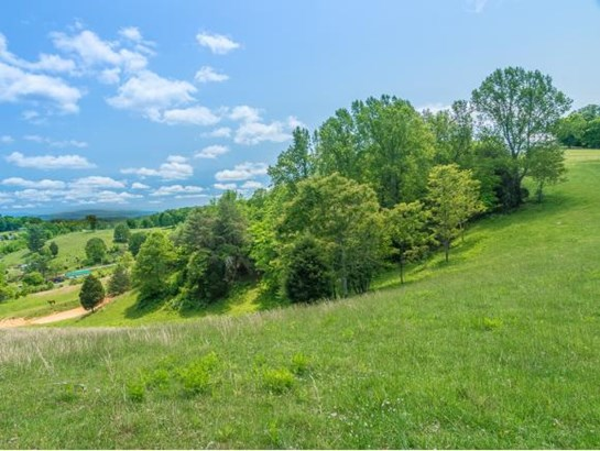 Residential/Single Family - Jonesborough, TN (photo 5)