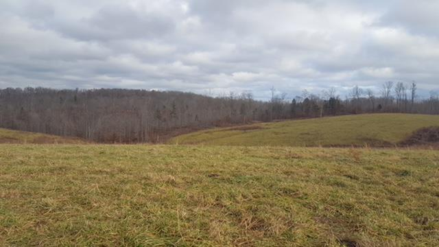 Lots and Land - Cumberland City, TN (photo 1)