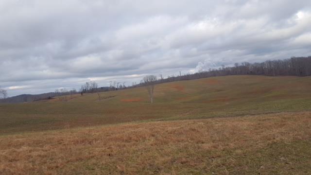 Lots and Land - Cumberland City, TN (photo 2)