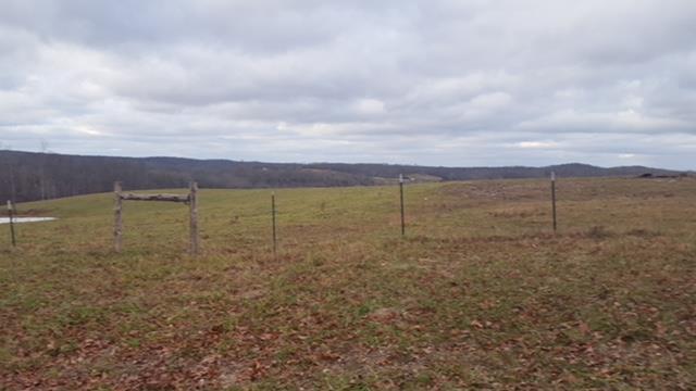 Lots and Land - Cumberland City, TN (photo 4)