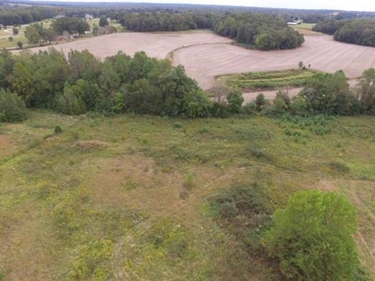 Lots and Land - Luray, TN (photo 2)