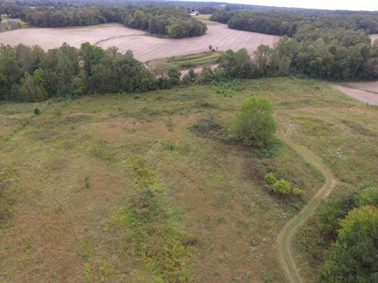 Lots and Land - Luray, TN (photo 3)