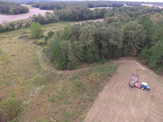 Lots and Land - Luray, TN (photo 4)